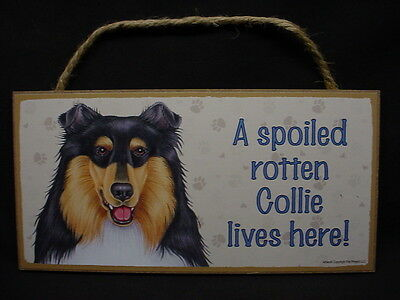 COLLIE A Spoiled Rotten DOG ART SIGN wood WALL HANGING PLAQUE puppy Tri-color