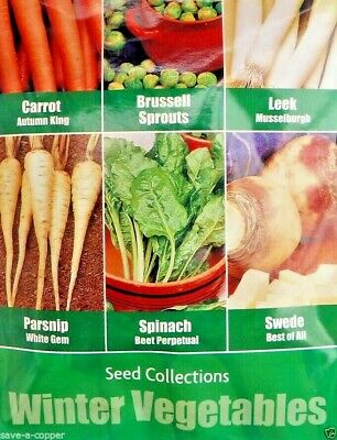 6 In 1 Winter Vegetables Seed Collection Multi Pack 490 Quality Vegetable Seeds