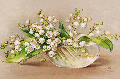 LILY OF THE VALLEY Vintage Postcard Image Photo, Blank Card Or Art Print FF001