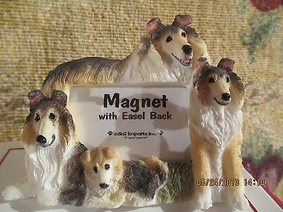 collie magnet picture frame  #62
