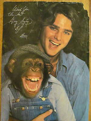 Greg Evigan, BJ and the Bear, Full Page Vintage Pinup