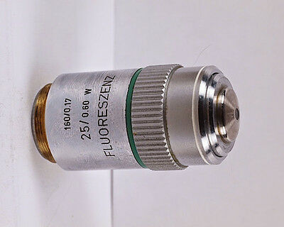Leitz FLUORESZENZ 25x W Water Immersion 160mm TL Microscope Objective