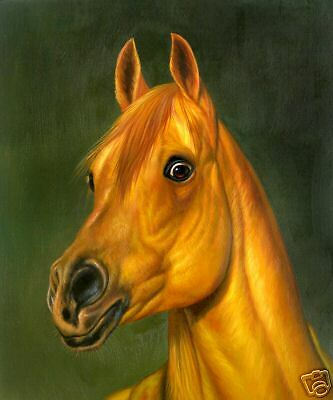 """High Quality Oill Painting """"Horse Portrait #114"""" 24x20"""