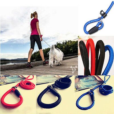 Pet Dog Nylon Rope Training Leash Slip Lead Strap Adjustable Traction Collar Hot