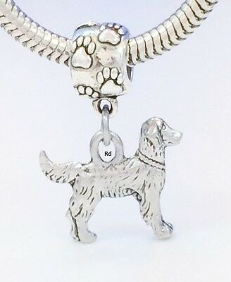 Golden Retriever Dog Charm on Paw Print Slider Bead for Bracelet  OR Necklace
