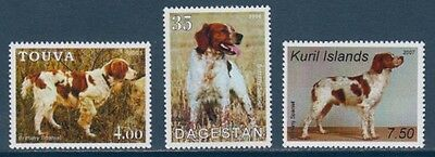 Brittany English Spaniel Dogs 3 different MNH stamps BREN08