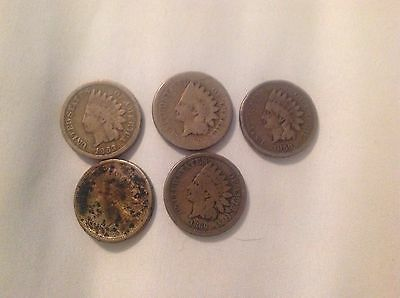 5 different indian head pennies 1859-1863