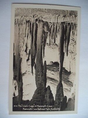 LIONS CAGE MAMMOTH CAVE NATIONAL PARK KENTUCKY VINTAGE POSTCARD