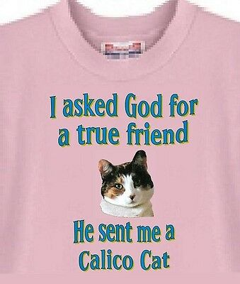 I Asked God for a true Friend Calico Cat T-Shirt Pink - 5 Colors Available
