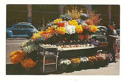 San Francisco Flower Stand   — 50¢ mailing