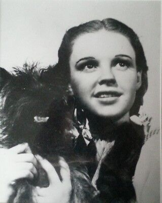 Judy Garland & Toto Movie Photo from the 1939 film The Wizard of Oz, Framed