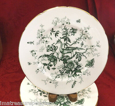 "Coalport Cairo Green 4 Luncheon Plates - 8 7/8"" Birds Insects Flowers Gold"
