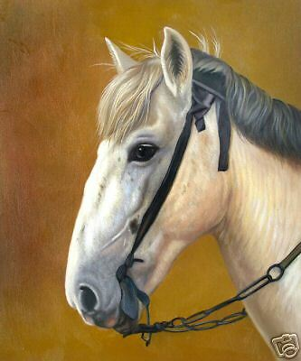 """High Quality Oill Painting """"Horse Portrait #149"""" 24x20"""