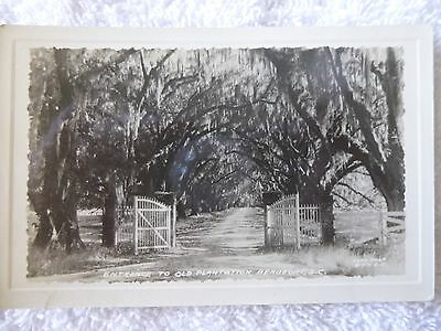 1940's RPPC Entrance to Old Plantation in Beaufort, SC South Carolina PC Rare