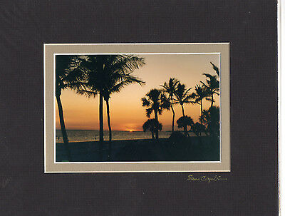 """PALM TREE SUNSET 4"""" X 6"""" PHOTO DOUBLE MATTED IN AN 8"""" X 10"""" READY FOR FRAMING"""
