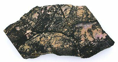 150 Gram Natural Cream Color Rhodonite Slab Cab Cabochon Gemstone Gem Rough RS5