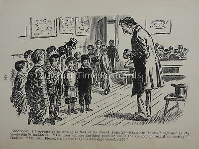 Children Theme CHILD IN CLASSROOM ZOOLOGY LESSON & CUCKOO Antique Punch Cartoon