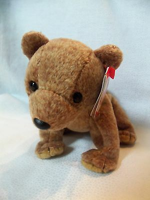 TY Beanie Babies Brown Bear ** PECAN ** 5th Generation New w/ Tag