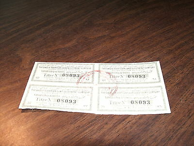 Anglo-Egyptian Land Company Societe Anonyme Egyptienne Bond Interest Coupons