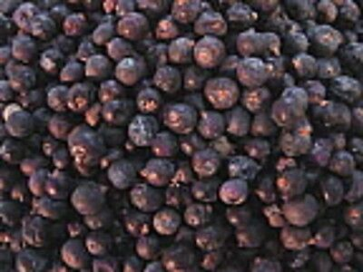Juniper Berries, blue - Potpourri, Soap - 12 - 8 - 6 - 4 - 2 - 1 oz