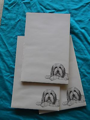 Bearded Collie Notepad 50 Sheets 8.5 x 5.5 New Black & White Drawing-3 pads