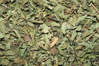 Olive Leaf, cut - 1-2-4-8 oz