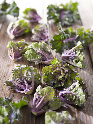 Vegetable  Flower Sprouts  Kale / Brussel Sprout Cross  30 Finest Seeds