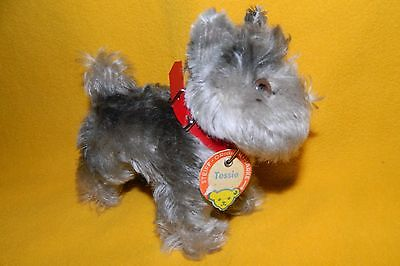 "Steiff Tessie terrier with button and name tag, Eulan small 5.5"" mint condition"