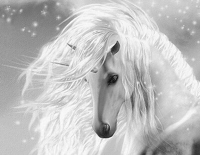 "Beautiful Fantasy Unicorn flowing mane gray CANVAS ART PRINT  8""X 10"" horse"