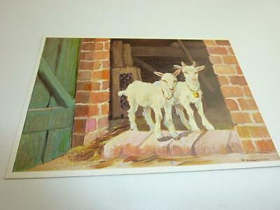 """vintage blank greeting cards  ARS SACRA Schönermark"""" the young goats """" #91#"""