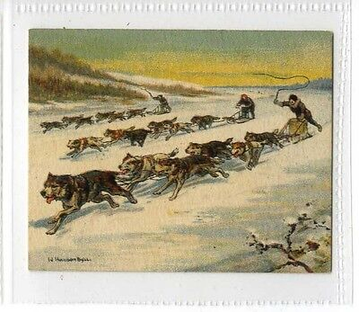 (Jb7465-100)  CARRERAS,RACES HISTORIC & MODERN(LARGE),CANADIAN DOGSLEIGH,1927#21