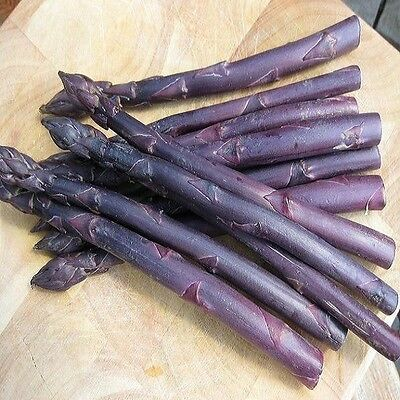 Vegetable  Asparagus  Sweet Purple  25 Finest Seeds