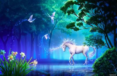 "Unicorn Pond Forest CANVAS ART PRINT 16""X 12"""