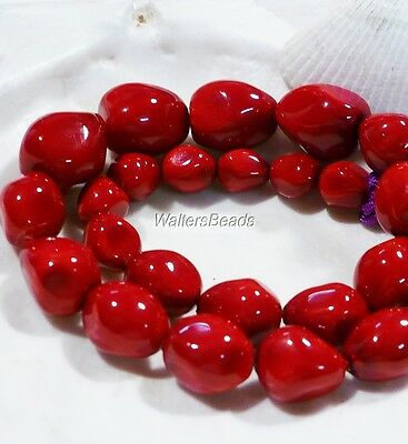 Natural Oyster Sea Shell Dark Red Coral Bead Nuggets Strand  15 MM  (1)