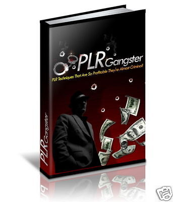Get A Very Profitable Information On-Line Business By Using Random PLR (CD-ROM)
