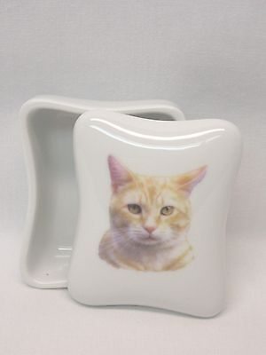 Yellow Oranage Tabby Cat Dresser or Trinket Box Porcelain Fired Head Decal Top