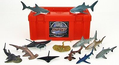 Sharks of the World Natures Library Set Colorata Rare Japan Mint