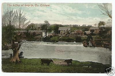 irish postcard ireland kildare leixlip