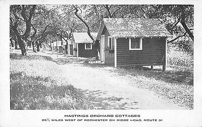 Hastings Orchard Cottages, New Hampshire Antique Postcard (T3602)