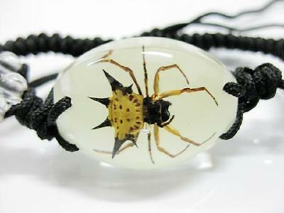 Accessories Insect Stinging Angle Spider Oval Bracelet Glow in dark NG