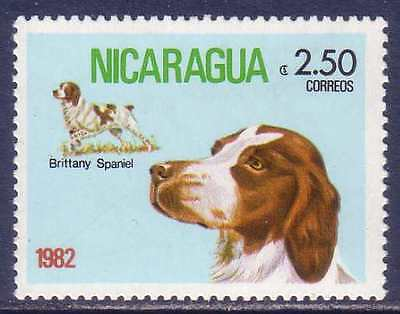 Brittany English Spaniel Dogs Nicaragua MNH stamp