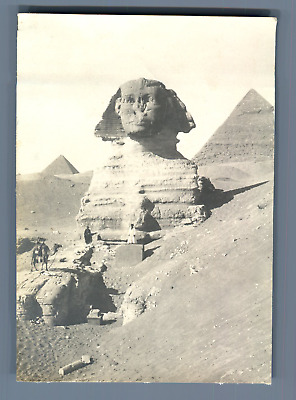 Egypt, The Sphinx  Vintage print. Tirage argentique  8x11  Circa 1900  Vin