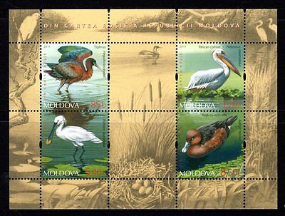 Moldova 2011 Birds Sheetlet 4 MNH