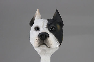 Pit Bull Terrier White Interchangeable Head See Breeds  Bodies @ Ebay Store)