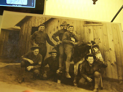Six  WW1 U.S Soldiers With Mule And A Dog