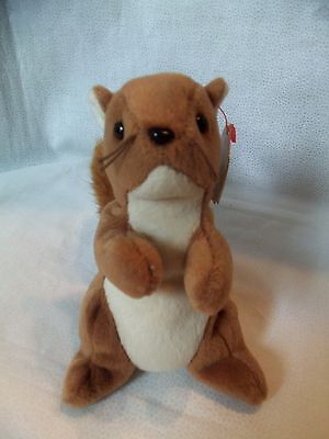 TY Beanie Babies Brown Squirrel ** NUTS **  4th Generation New w/ Tag