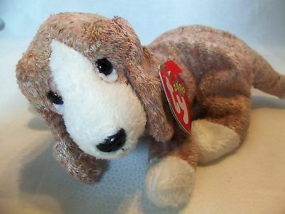 TY Beanie Babies Softest Puppy ** SNIFFER ** 6th Generation New w/ Tag
