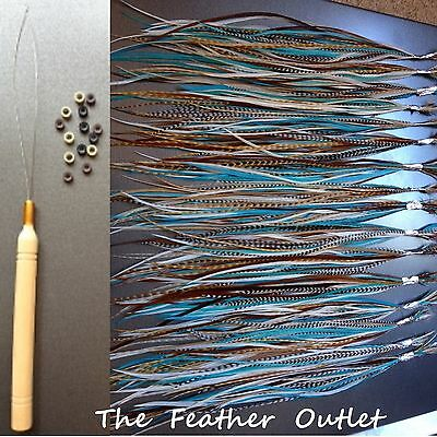 Feathers Hair Extensions Kit Lot 10 Grizzly Turquoise Natural Browns NATIVE KIT