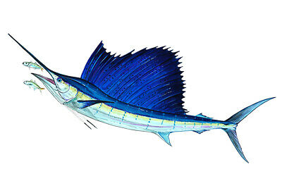 Home Car Truck RV Boat Cup Almost Alive Sailfish Vinyl Decal Sticker