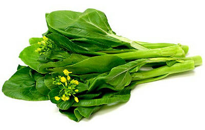 CHOY SUM 150 seeds asian vegetable vegetable garden SUPER FAST HARVEST